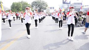 Marching Band. stock video footage
