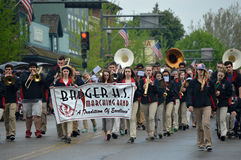 Marching Band. The Lake Geneva, Wisconsin, Badger High School Marching Band, marching in the Veteren's Day parade stock photo