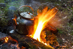 Marching kettle on a fire in the forest Stock Images