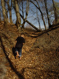 Marching Up Leaf Trail. Young boy marching up a trail of leaves on a crisp Autumn afternoon stock photo