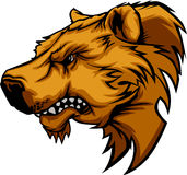 Marchio della mascotte dell'orso Fotografia Stock