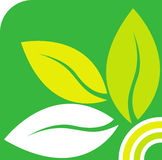 Marchio verde del foglio Fotografia Stock