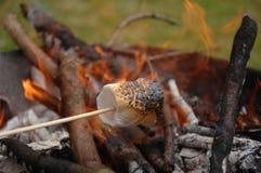 Marchmallow brûlé et cheminée Photos stock