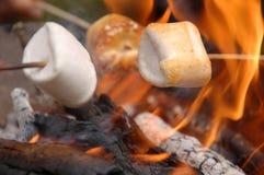Marchmallow chaud et cheminée Photographie stock libre de droits
