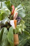 Marchwiana rolka z świeżym veggie Fotografia Stock