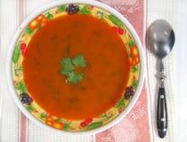 marchwiana zupę. obraz stock