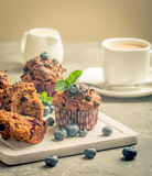 Marchwiani muffins z blueberrie Fotografia Stock