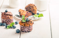 Marchwiani muffins z blueberrie Obraz Royalty Free