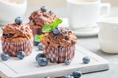 Marchwiani muffins z blueberrie Obraz Stock