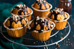 Marchwiani muffins z ciemną czekoladową polewą i dokrętkami na zmroku plecy zdjęcia royalty free