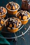 Marchwiani muffins z ciemną czekoladową polewą i dokrętkami na zmroku plecy obrazy royalty free