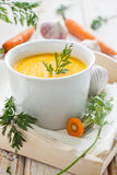 marchwiany zupny korzenny Fotografia Royalty Free