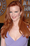 Marcia Cross Imagem de Stock Royalty Free