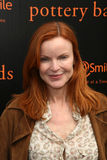Marcia Cross Royalty-vrije Stock Foto