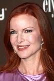 Marcia Cross, Pink Stock Photos