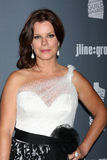 Marcia Gay Harden Royalty Free Stock Photography