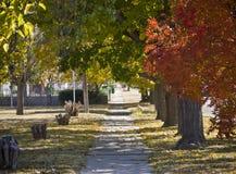 Marciapiede in autunno Fotografia Stock Libera da Diritti