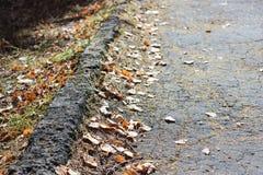 Marciapiede con le foglie Fotografia Stock