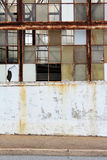 Marciapiede e finestre rotte Fotografia Stock