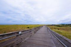 Marciapiede lungo di legno per i vacanzieri che viaggiano lungo la costa di Oc Fotografia Stock Libera da Diritti