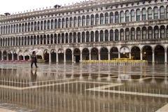 圣Marco威尼斯 库存图片