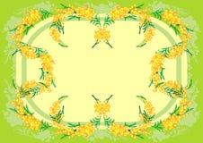Marco abstracto de la mimosa ilustración del vector