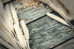 Marco agrícola con trigo Imagenes de archivo