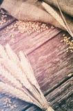 Marco agrícola con trigo Imagen de archivo libre de regalías