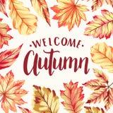 Marco agradable del otoño Fotografía de archivo