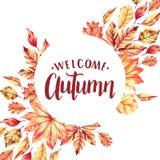 Marco agradable del otoño Fotografía de archivo libre de regalías