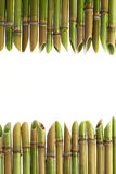 Marco agudo del bastón Imagenes de archivo