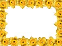 Marco de la primavera Imagen de archivo