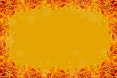 Marco amarillo-naranja Fotografía de archivo libre de regalías