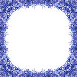 Marco azul de la flor Imagenes de archivo