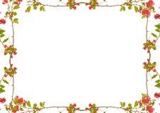 Marco blanco con las fronteras florales adornadas Foto de archivo