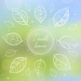 Marco blanco del círculo del garabato con las hojas pintadas a mano Fotografía de archivo