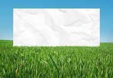 Marco blanco en el prado Imágenes de archivo libres de regalías