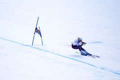Marco Buechel - Fis World Cup royalty free stock photos