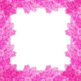marco color de rosa Imagenes de archivo