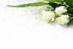 Marco color de rosa del blanco Imagen de archivo