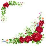 Marco color de rosa del rojo ilustración del vector
