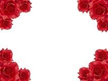 Marco color de rosa del rojo Fotografía de archivo