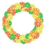 Marco colorido para su texto, vector de la fruta cítrica libre illustration