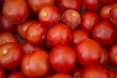 Marco completo de tomates en un mercado francés Imagen de archivo libre de regalías