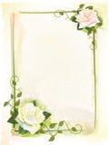 marco con las rosas. Fotografía de archivo libre de regalías