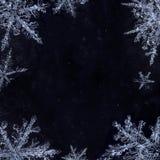 Marco congelado del copo de nieve Imágenes de archivo libres de regalías