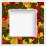 Marco cuadrado con las hojas de otoño amarillas ilustración del vector