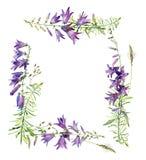 Marco cuadrado de la acuarela de las campanas de las flores libre illustration