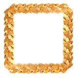 Marco cuadrado de oro de las ramas del laurel Fotos de archivo libres de regalías