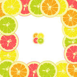 Marco cuadrado de pedazos de limón, naranja, cal, pomelo Imagenes de archivo